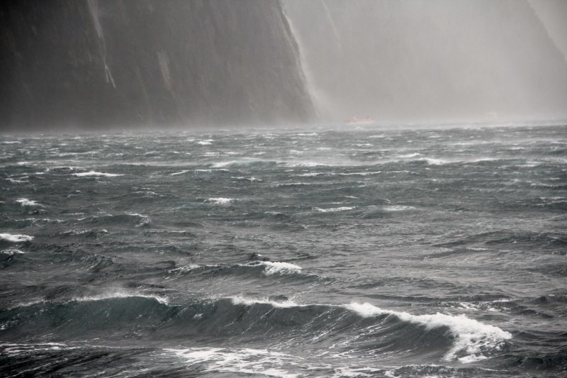 NZ-Southland0327.jpg