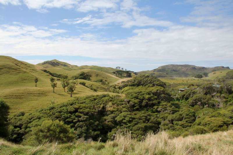 NZ-Southland0838.jpg