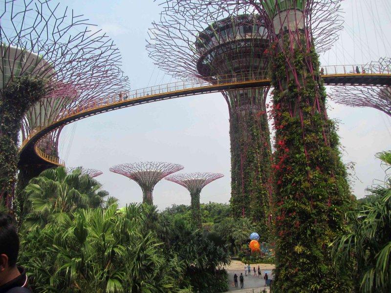 Singapur1770.jpg