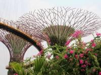 Singapur2270.jpg