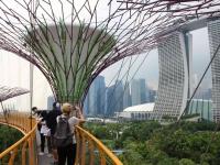 Singapur2470.jpg