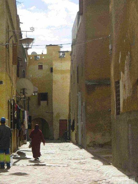 Von Rabat bis Agadir / 16.-24.10.12 /
